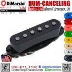 ปิ๊กอัพ DiMarzio® HS-2™ DP116 YJM