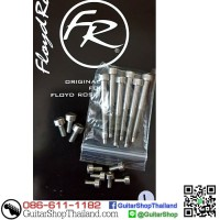 ชุดสกรู Floyd Rose Stainless Steel Screw Set