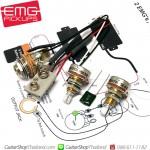 ชุดวงจร EMG Mini Pot 25K Set 2