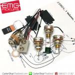 ชุดวงจร EMG Mini Pot 25K Set 3